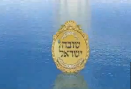 """הרה""""ג רבי שלמה פינטו / פרשת פנחס"""